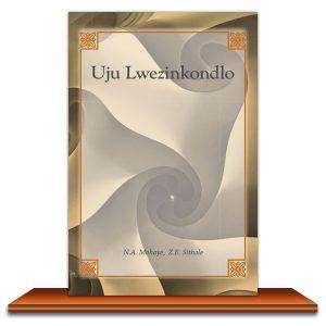 Uju-Lwezinkondlo-N-A-Mahaya-Z-E-Sithole-on-the-Shelf-300x300